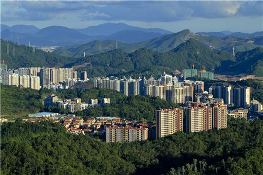 惠州市森林进城.jpg