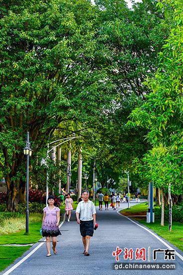 市民在剑英公园漫步