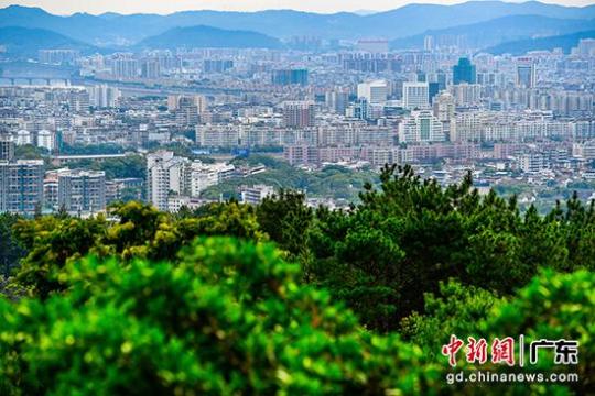 从梅城百岁山森林公园俯瞰梅州城区