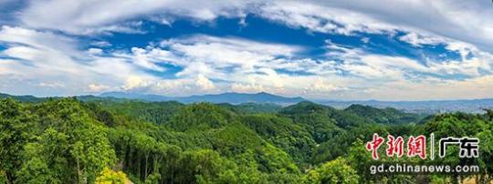 梅州梅城百岁山森林公园