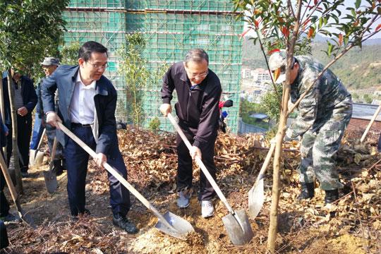 广东:4000万人预计植树1.2亿株