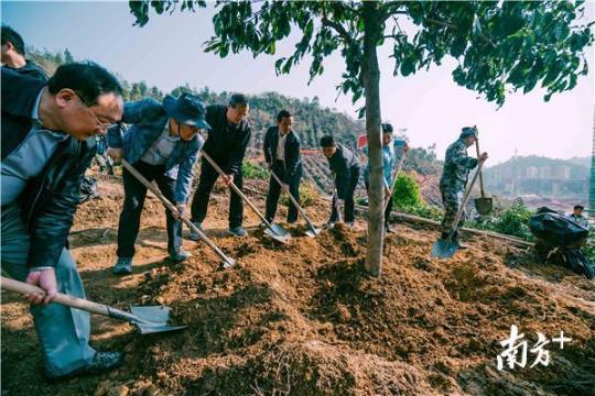 视频|省林业局局长:作为广东绿色排头兵,惠州可为大湾区贡献生态力量